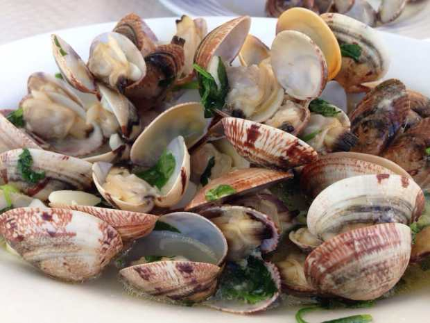 steamed littleneck clams - ameijoas a bulhao pato